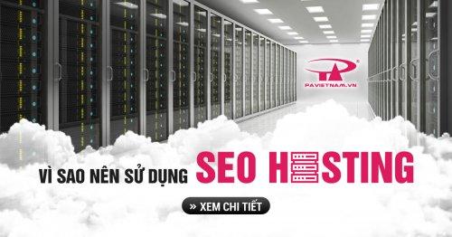 Lợi ích sử dụng SEO Hosting tại P.A Việt Nam cho website?